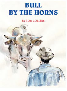 tod collins bull by the horns