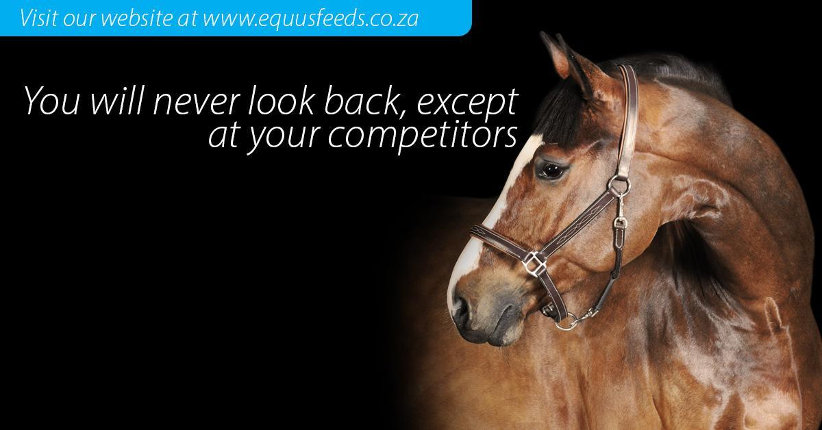Equus Feeds